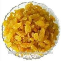 dried golden raisin Manufacturer