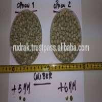 Green Peas Manufacturer