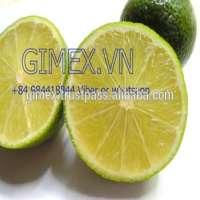 Viet nam fresh lime  Manufacturer