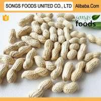 Good Peanut, Songs Foods Peanut Count 9//11,11/13