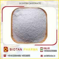 Amazing Hygienically Processed Sodium Caseinate  Manufacturer