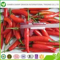 IQF Red Chilli Pepper