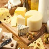 Mozzarella Cheese Fresh Cheese Cheddar Cheese Manufacturer