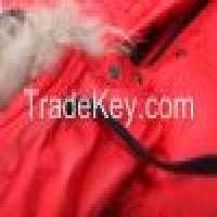 Mens jacket: mens casual down jacket Manufacturer