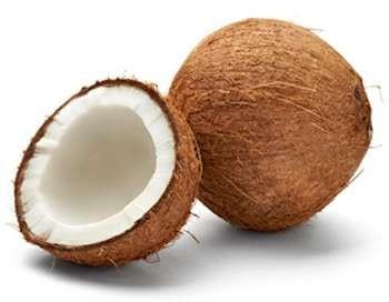 Mature coconut/ Semi husked Coconut