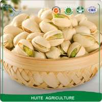 Salty and Roasted Pistachio Nuts