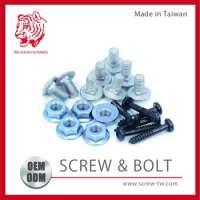 Fastener Screw and Bolt