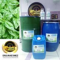 Basil Oil Natural and Pure