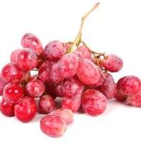 Fresh Seasoned Seeded Red Globe Grapes
