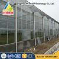 Automatic muti span glass tomato greenhouse Manufacturer