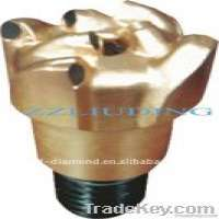 PDC noncoring drill bit Manufacturer