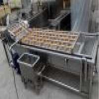 Vegetables washing machine Manufacturer