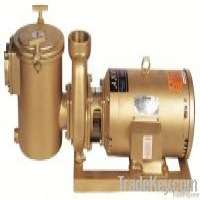 swimming pool equipment water pump Manufacturer