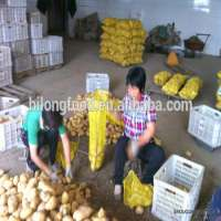 Potato Manufacturer