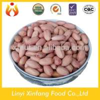 raw organic peanuts ground nuts peanuts prices Manufacturer
