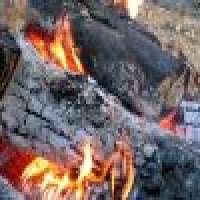 Firewood charcoal Manufacturer